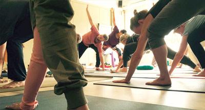 Yoga teacher training the Netherlands